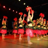 gala dance tahitienne 2016 091